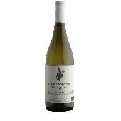 Tomassetti Cercanome - 2017 - N. 12 Bottles