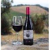 Sequerciani Libello 2018 IGT Toscana - N. 12 Bottles