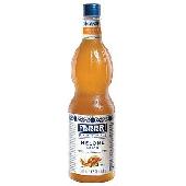 Sciroppo Fabbri Melone Mixybar
