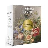 Tenuta S. Antonio Giardini di Vite - Bianco Garganega-Chardonnay IGT Trevenezie
