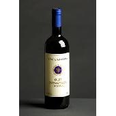 Extra virgin olive oil - Tenuta San Guido
