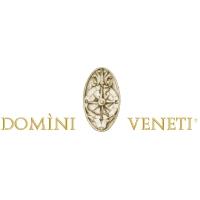 Domini Veneti