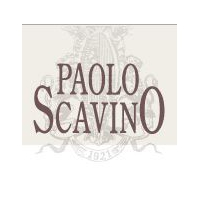 Paolo Scavino