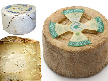 Castelmagno Of Mountain DOP - La Bruna