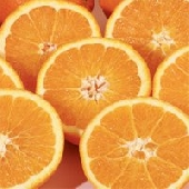 Sicilian Ribera Juice Oranges (Arance di Ribera Dop)