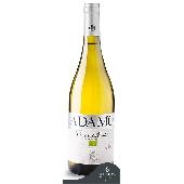 Organic wine Sauvignon Costa dell'Ape - Azienda Agricola Biologica Adamo