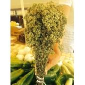 Sicilian oregano in bunches - Az. Agr. Balducco Fulgatore