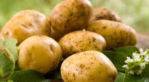 Italian Potatoes