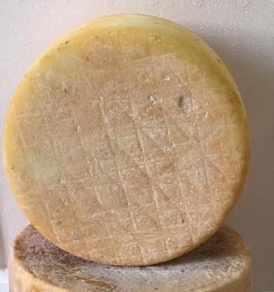 Pecorino Sardo con caglio vegetale - Dolce di cardo stagionato 6 mesi - Azienda Agricola Mureddu Aru