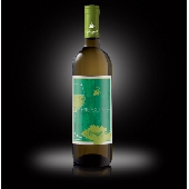 Riesling frizzante oltrep� pavese doc - Ruinello