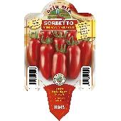 San Marzano Tomato - Orto mio