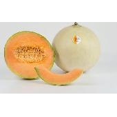 Melon Mantovano IGP